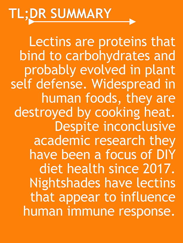 TL;DR Lectins are proteins that bind to carbohydrates and probably evolved in plant self defense. Widespread in human foods, they are destroyed by cooking heat. Despite inconclusive academic research they have been a focus of DIY diet health since 2017. Nightshades have lectins that appear to influence human immune response.